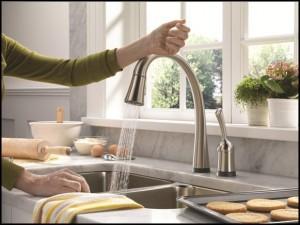 Faucet, John Silva, The Fix-It Professionals