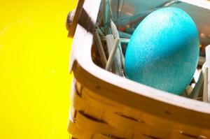 eggs in basket, John Silva, The Fix-It Professionals