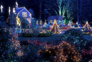 House with Christmas lights, John Silva, The Fix-it Professionals