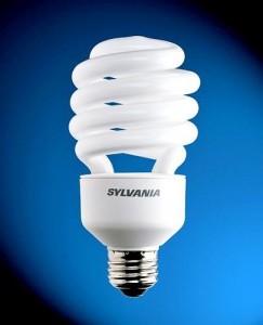 CFL Bulb, John Silva, The Fix-It Professionals