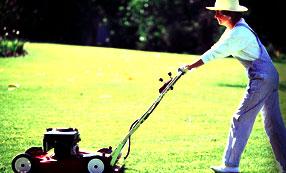 mowing the lawn, John Silva, The Fix-It Professionals